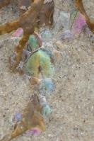 Kleurenpalet aan het strand – Colours on thebeach